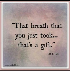 That breath that you just took... that's a gift - Rob Bell